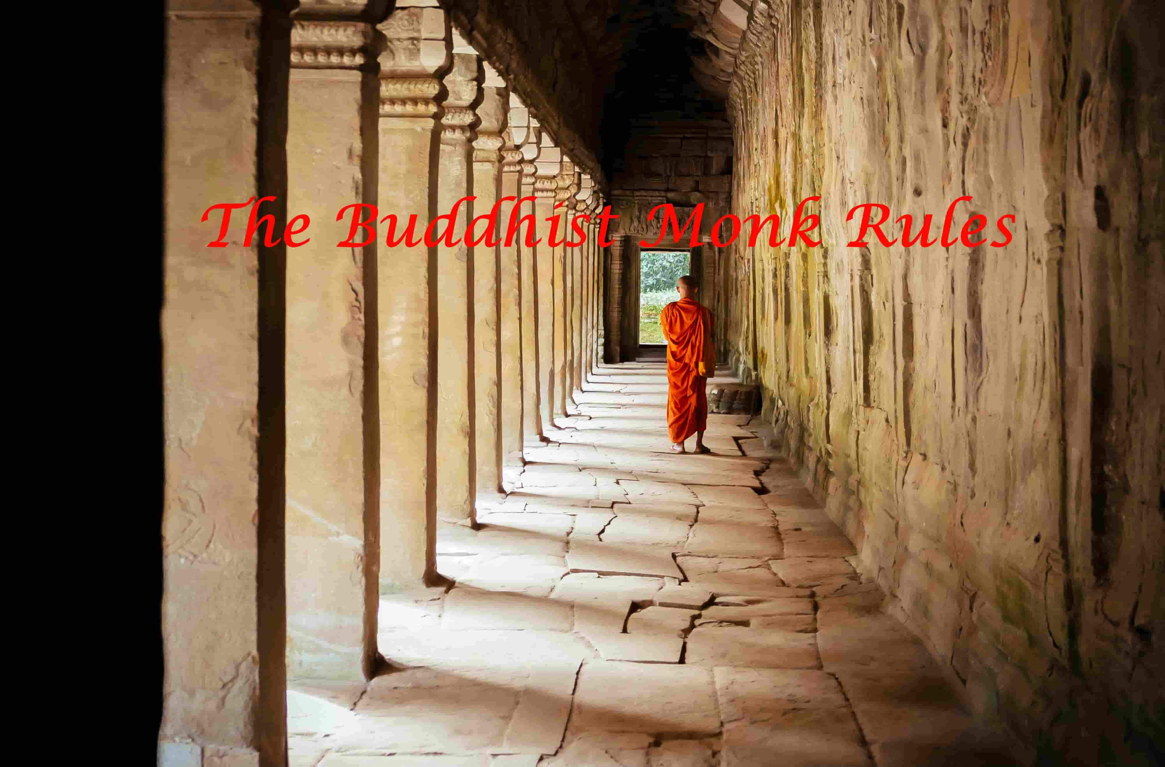 The Buddhist Monk Rules