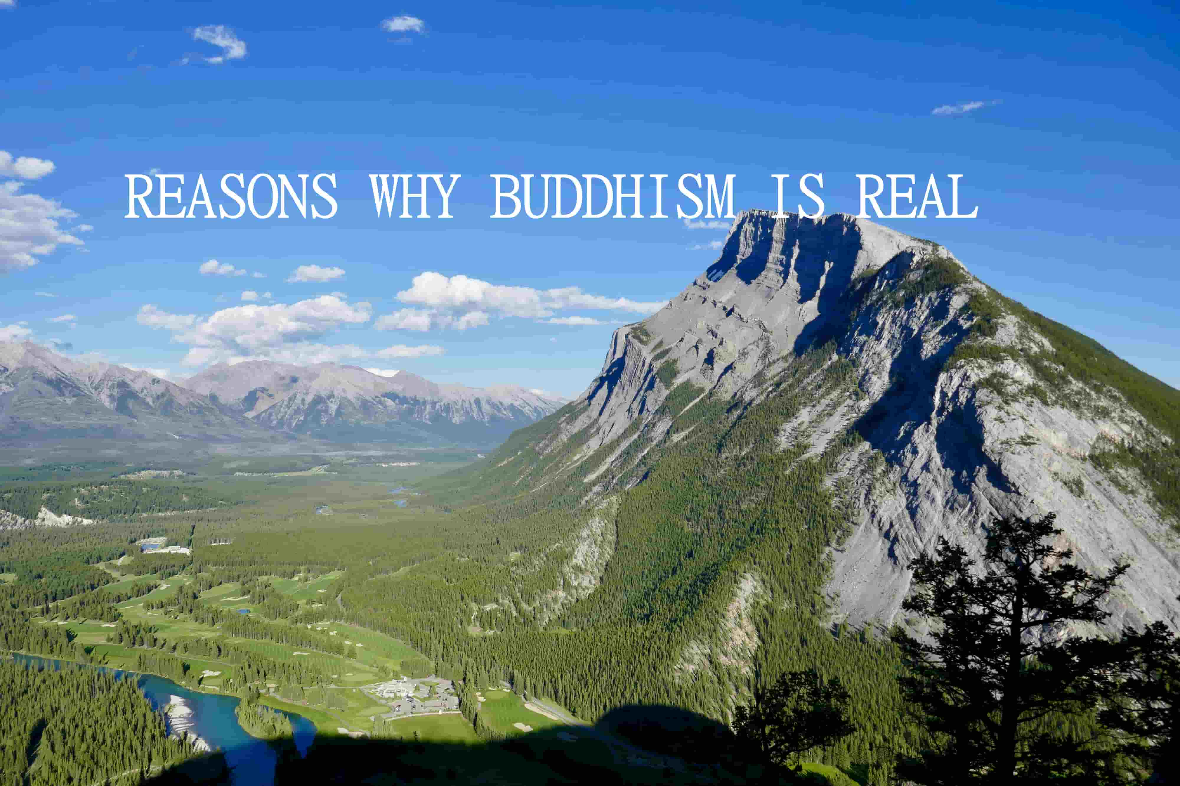 REASONS WHY BUDDHISM IS REAL