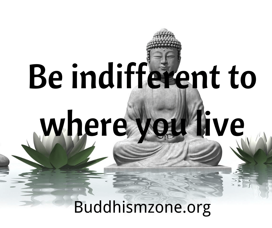 Buddhism Quote 003